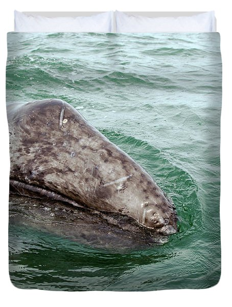 Hand Across The Waters Duvet Cover