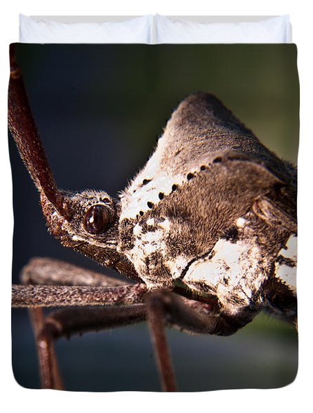 Handsome Bug Duvet Cover