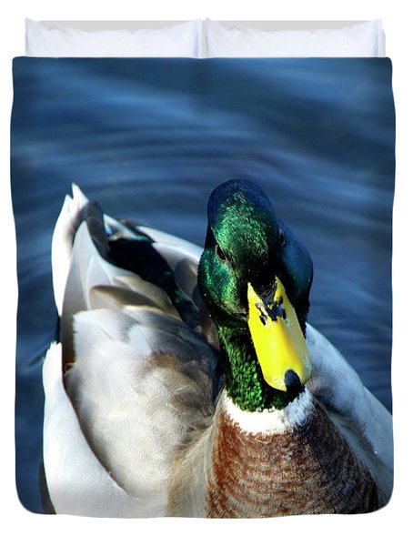 Handsome Male Mallard Duvet Cover