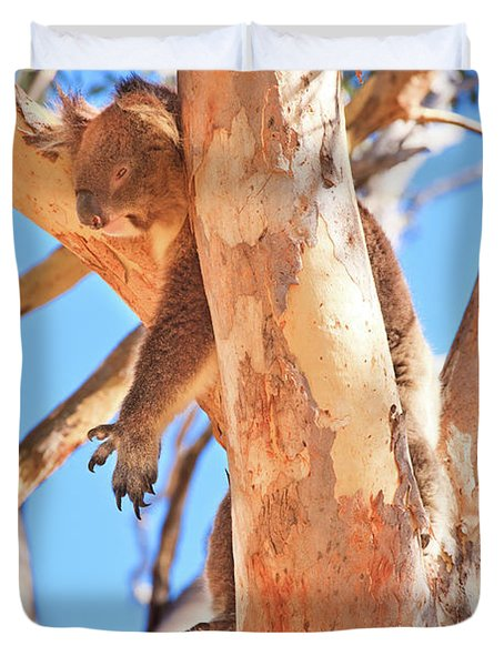Hanging Around, Yanchep National Park Duvet Cover