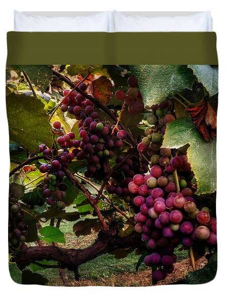 Hanging Out In The Vineyard Duvet Cover