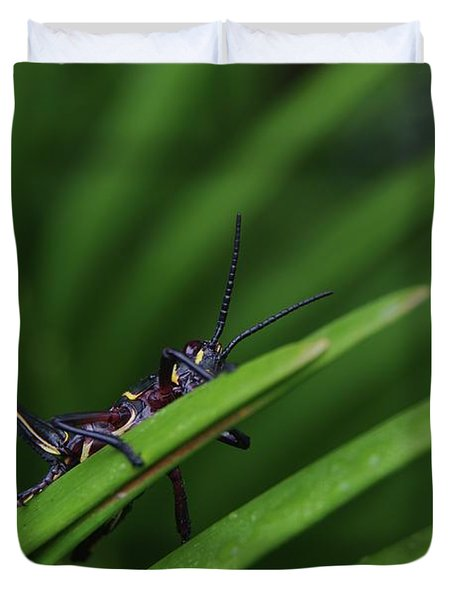 Duvet Cover featuring the photograph Hanging Out by Richard Rizzo