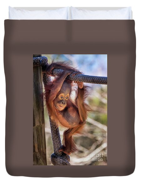 Hanging Out Duvet Cover by Stephanie Hayes