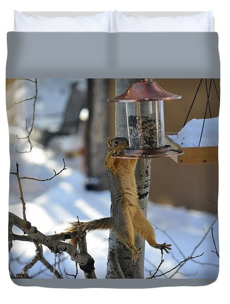 Hanging Squirrel Duvet Cover