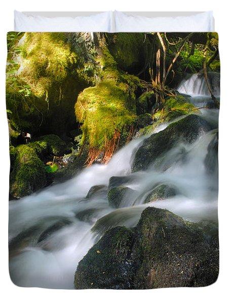 Hanson Falls Duvet Cover by Larry Ricker