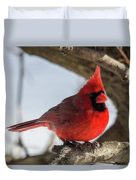 Happy Mister Cardinal Duvet Cover