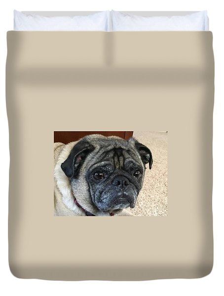 Happy Pug Duvet Cover by Russell Keating