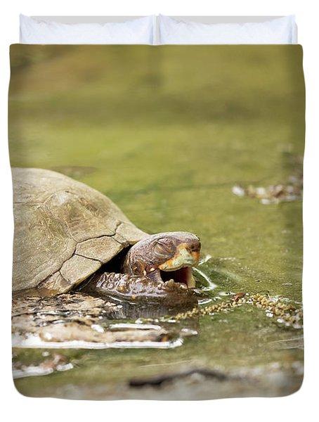 Happy Turtle Duvet Cover