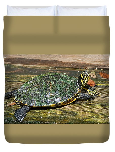 Happy Yellow Bellied Slider Duvet Cover by Kenneth Albin