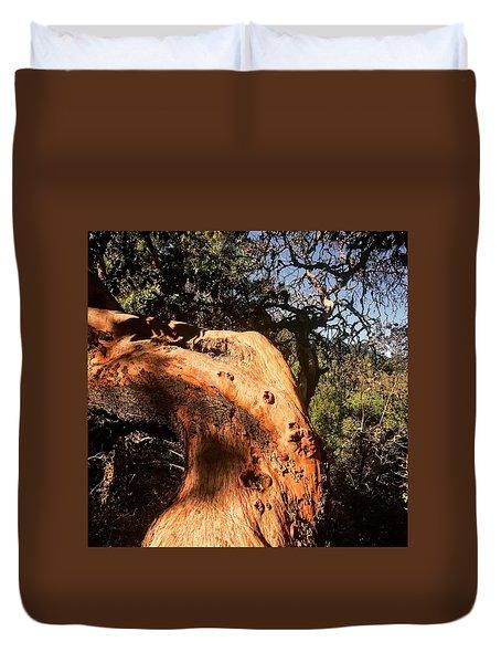 Hard Wood Duvet Cover
