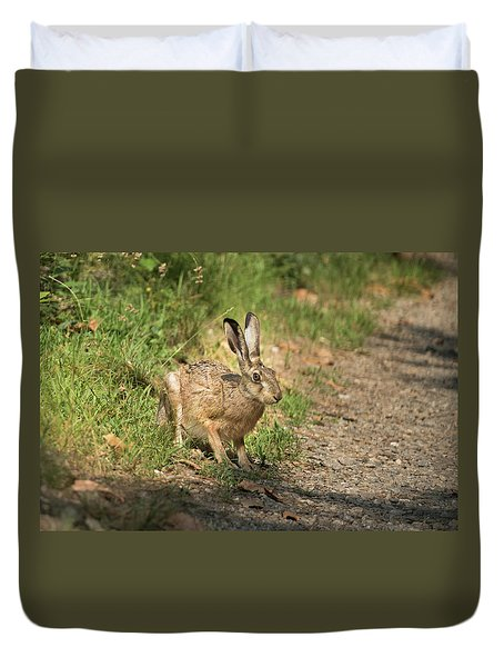 Hare In The Woods Duvet Cover