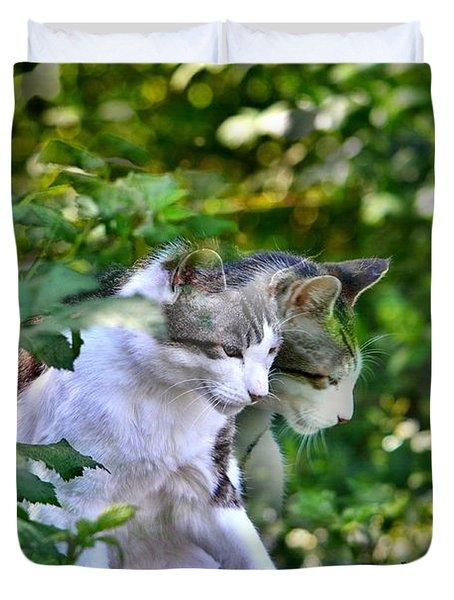 Harlequin Cat Twins Duvet Cover