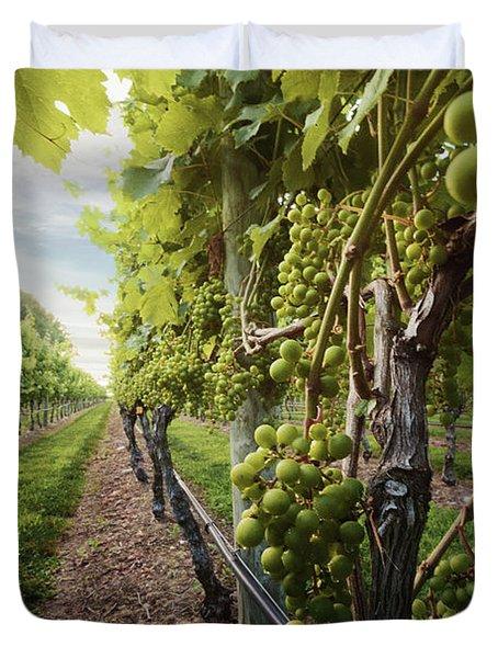 Harmony Vineyard Stony Brook New York Duvet Cover