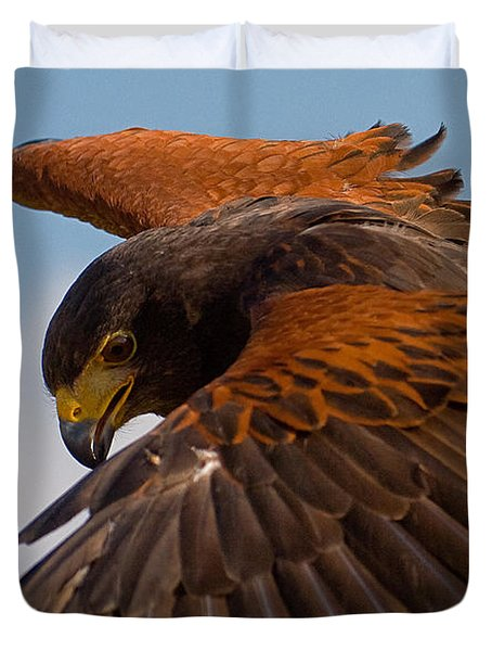 Duvet Cover featuring the photograph Harris Hawk Approach-signed-#6077 by J L Woody Wooden