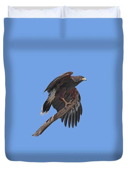 Harris Hawk - Transparent Duvet Cover