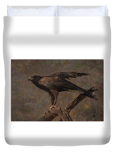 Duvet Cover featuring the photograph Harris's Hawk by Barbara Manis