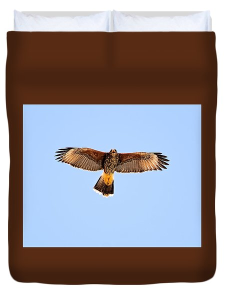 Duvet Cover featuring the photograph Harris's Hawk H36 by Mark Myhaver