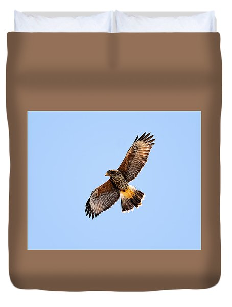 Duvet Cover featuring the photograph Harris's Hawk H37 by Mark Myhaver
