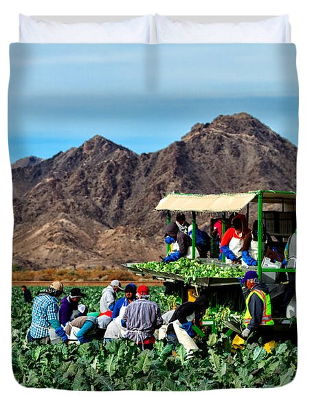 Harvesting Broccoli Duvet Cover by Robert Bales