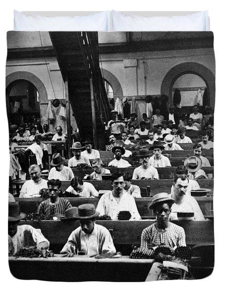 Havana Cuba - Cigars Being Rolled - C 1903 Duvet Cover