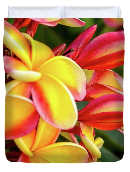 Duvet Cover featuring the photograph Hawaii Plumeria Flowers In Bloom by D Davila