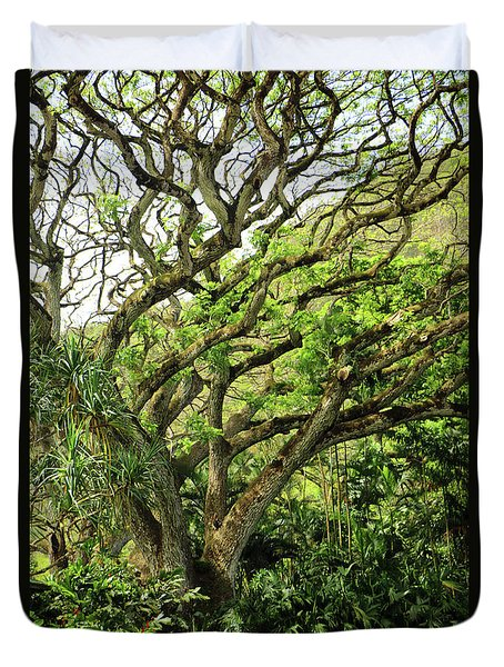 Duvet Cover featuring the photograph Hawaii Tree-bard by Denise Moore