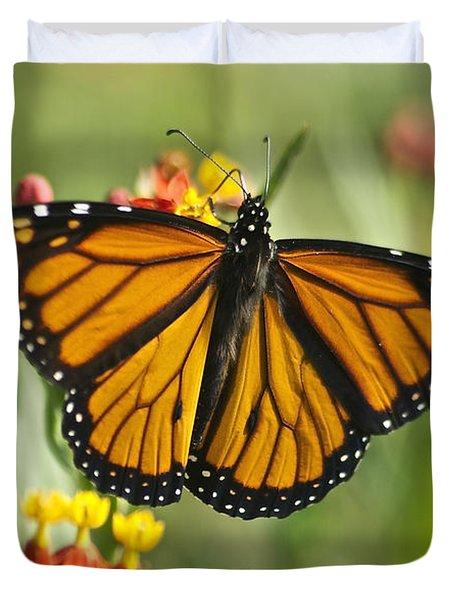 Hawaiian Monarch 3 Duvet Cover by Michael Peychich