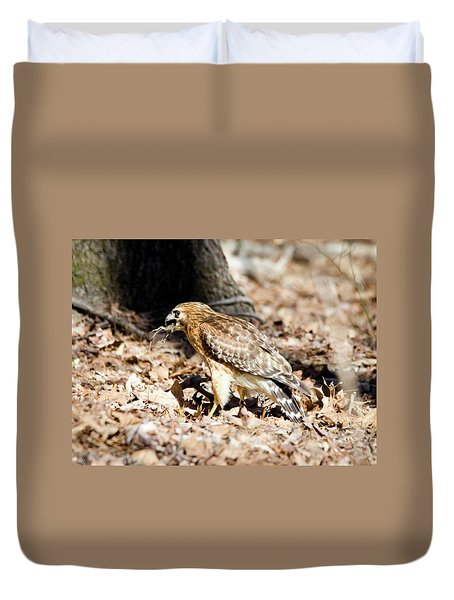 Duvet Cover featuring the photograph Hawk And Gecko by George Randy Bass