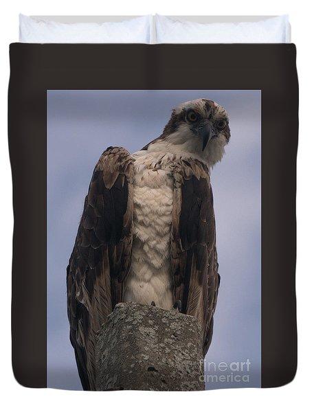 Hawk Attitude Duvet Cover
