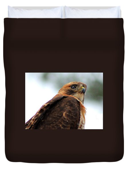 Duvet Cover featuring the photograph Hawk by Bruce Patrick Smith