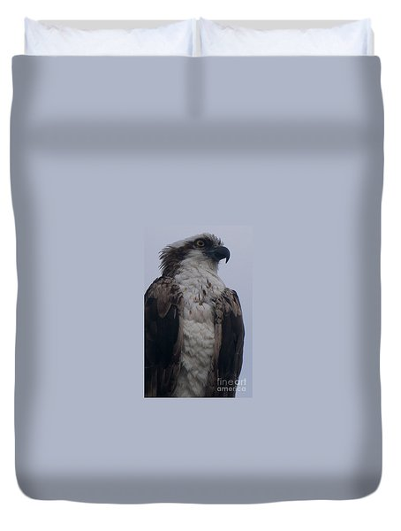 Hawk Looking Into The Distance Duvet Cover