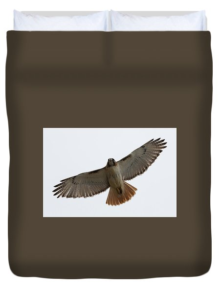 Hawk Overhead Duvet Cover