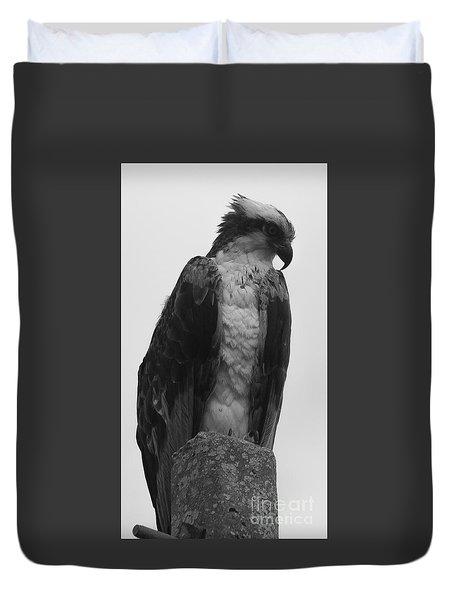 Hawk Perched Duvet Cover
