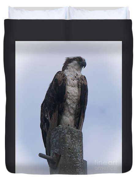 Hawk Pose Duvet Cover