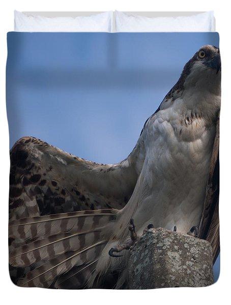 Hawk Stretching Duvet Cover