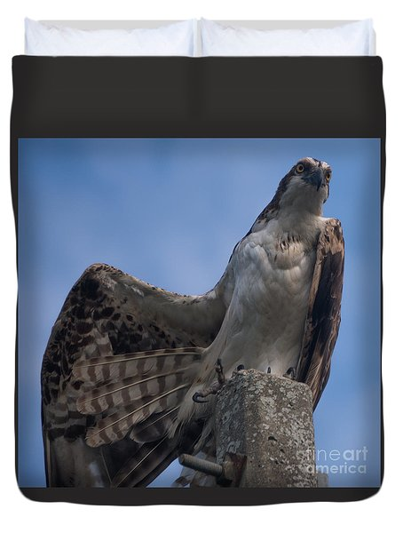 Hawk Stretching Duvet Cover