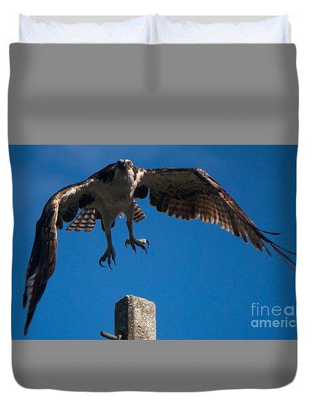 Hawk Taking Off Duvet Cover