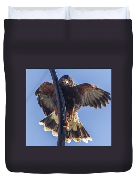 Hawk Watch 6 Duvet Cover