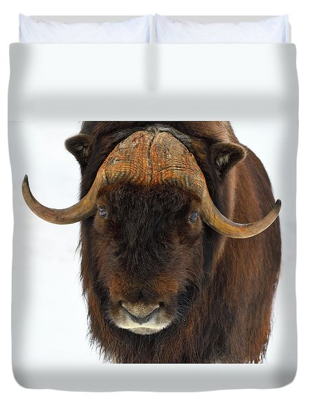 Duvet Cover featuring the photograph Head Butt by Tony Beck