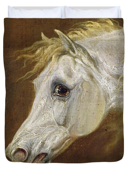Head Of A Grey Arabian Horse  Duvet Cover by Martin Theodore Ward