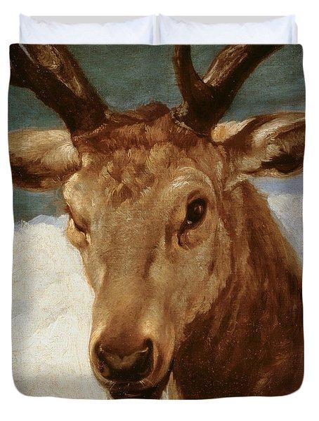 Head Of A Stag Duvet Cover by Diego Rodriguez de Silva y Velazquez