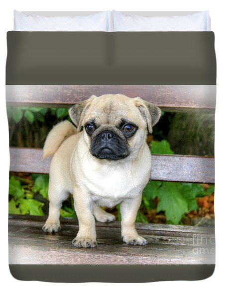 Heathcliff The Pug Duvet Cover