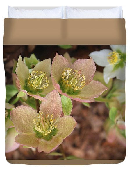 Duvet Cover featuring the photograph Heavenly Hellebores by Living Color Photography Lorraine Lynch