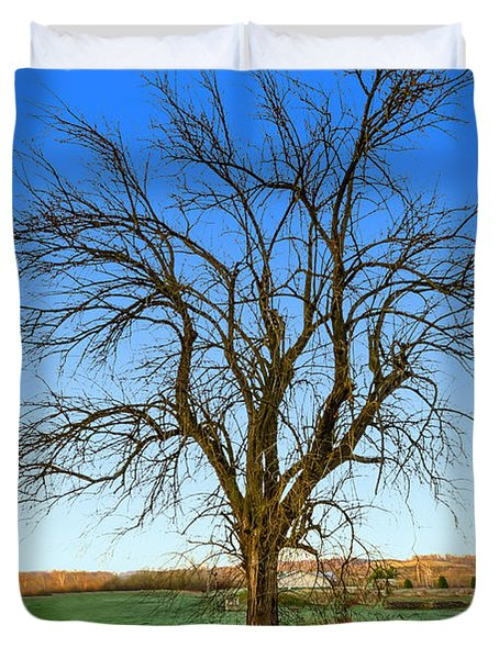 Hedge Apple Tree Duvet Cover by Brian Stevens