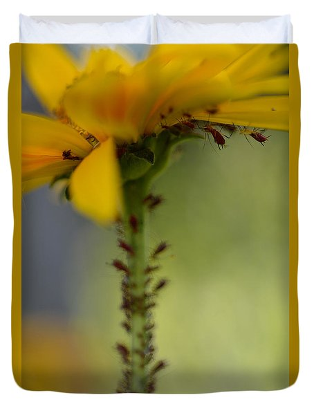 Heliopsis Infested Duvet Cover