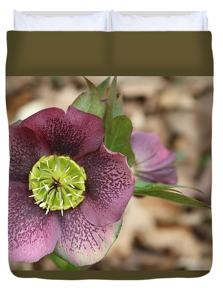 Duvet Cover featuring the photograph Hellebores by Living Color Photography Lorraine Lynch