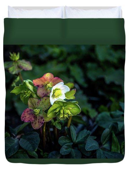 Helleborus From Her Garden Duvet Cover