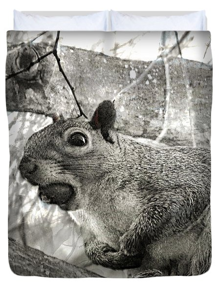 Duvet Cover featuring the photograph Pesky Squirrel by Fine Art By Andrew David