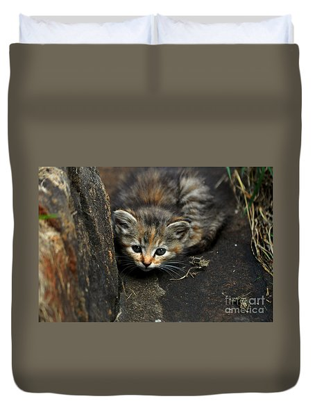 Hello Little Kitty Duvet Cover by Eric Liller