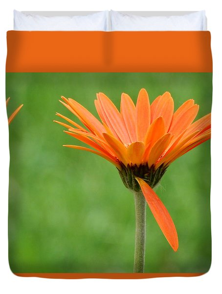 Duvet Cover featuring the photograph Help Me Up by Betty-Anne McDonald